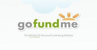 https://www.gofundme.com/bobriwka-fundraising-2018